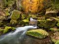 Řeka Kamenice u Dolského mlýnu