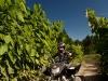 ctyrkolky-juwi-access-13