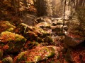 Černá Desná na podzim