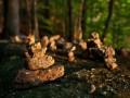 Skladané kamínky