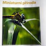 Časopis fotovideo